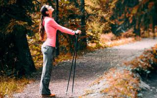 Можно ли заменить палки для скандинавской ходьбы лыжными?