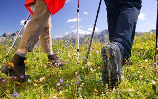 Советы при выборе обуви для скандинавской ходьбы, обзор моделей
